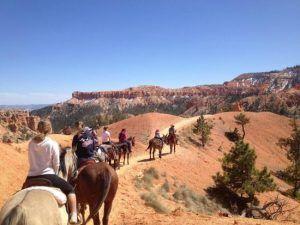 ride horse bryce canyon