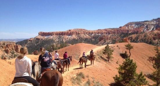 ride horse bryce canyon