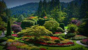 jardines-butchart