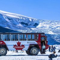 Glaciar-Bus