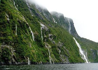 Nueva Zelanda MF