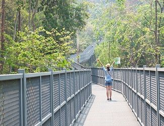 Happy traveller raise up her hands among walking on Canopy Walks, Queen Sirikit Botanic Garden