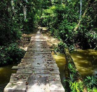 Iquitos Puente