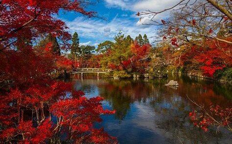 Kioto 2