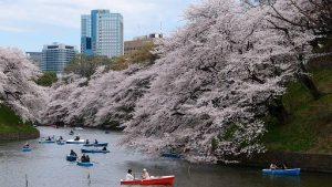 VIAJE TU AIRE A JAPÓN 9 NOCHES