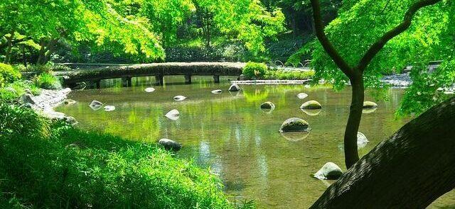 viaje a Japón y sus templos