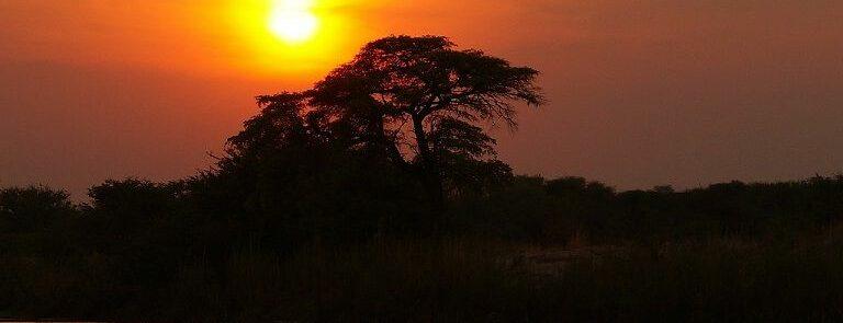VIAJE NAMIBIA A MEDIDA