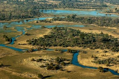 Aerial view of the Okavango Swamp, Moremi Game Reserve, Botswana