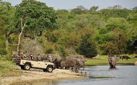 Parque Nacional Kruger 2