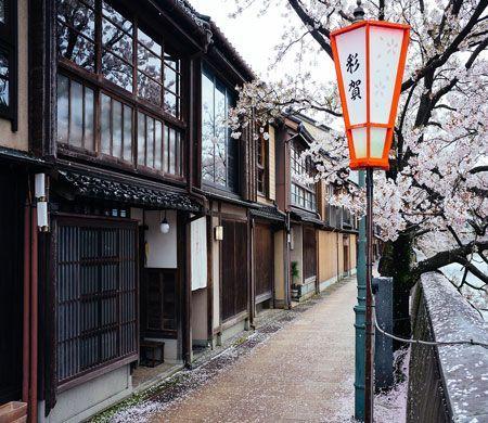 geishas en kanazawa